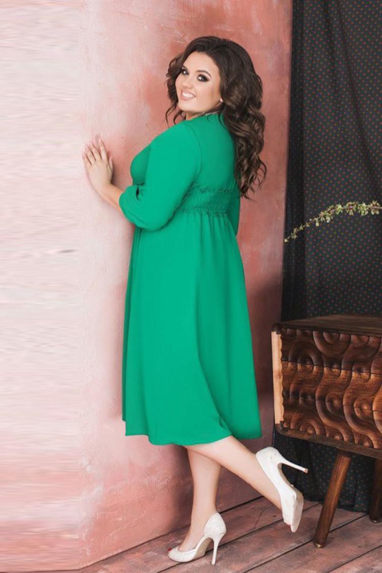 аза-зеленый-спина